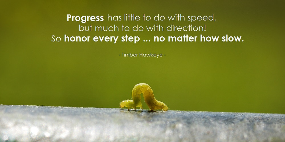make slow progress