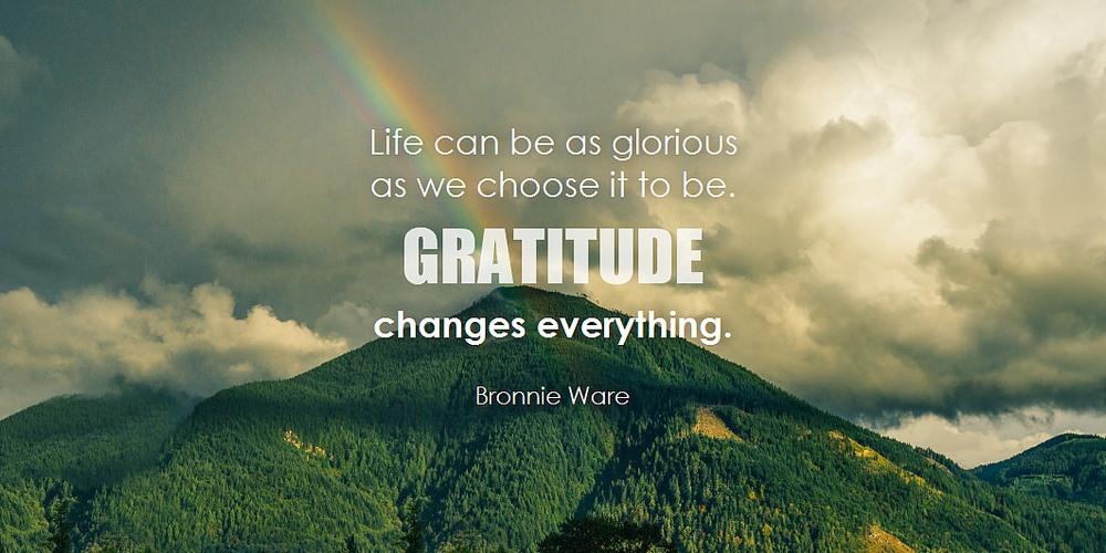 3. Practise Gratitude