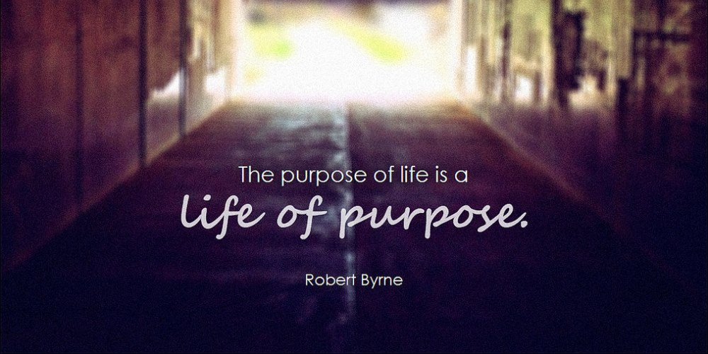 have a purpose